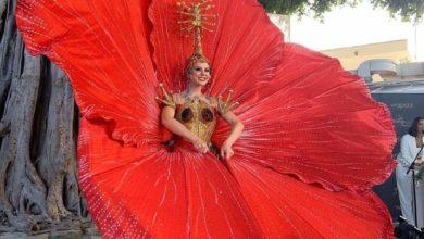 Photo of Madison representará la flor maga y el coquí en Miss Universe