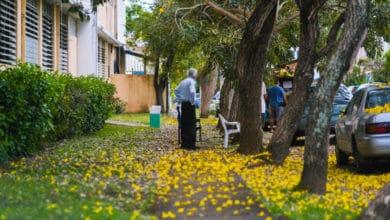 Photo of Puerto Rico sin estrategia ni pruebas para los adultos mayores ante el Covid-19