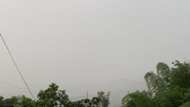Photo of «Bien insalubre» la calidad del aire por Polvo del Sahara