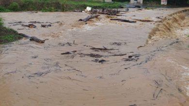 Photo of Deslizamientos, tendido eléctrico, caída de árboles e inundaciones en calles de Carolina