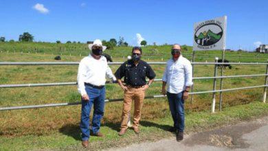 Photo of Agricultura y DDEC inauguran proyecto agrosolar en Hatillo